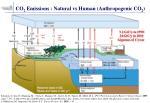 co 2 emissions natural vs human anthropogenic co 2