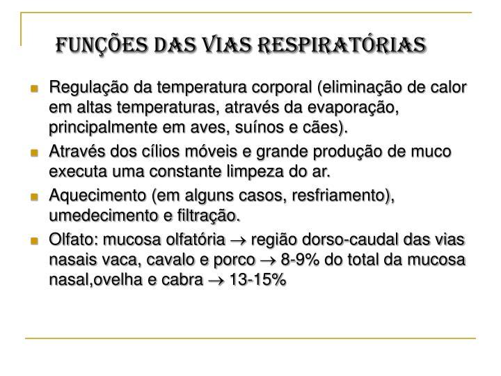 Funções das vias respiratórias