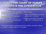 european court of human rights the convention