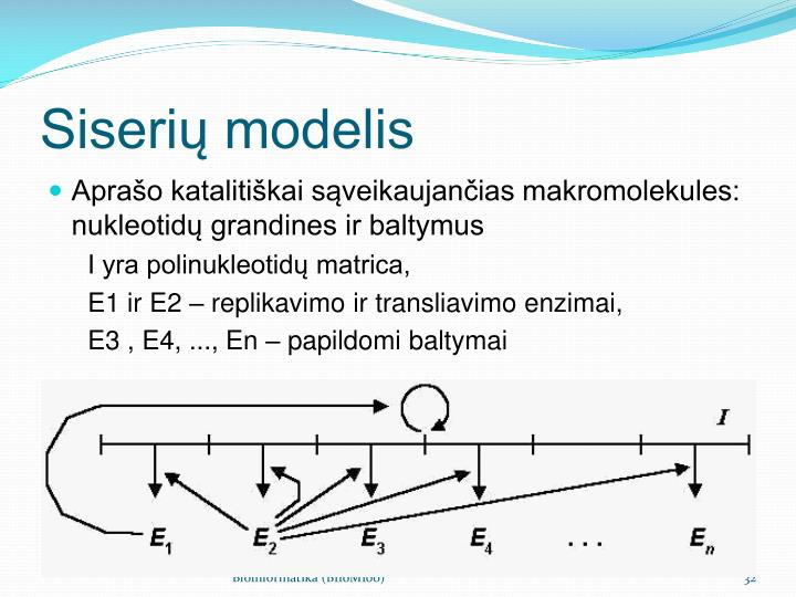 Siserių modelis