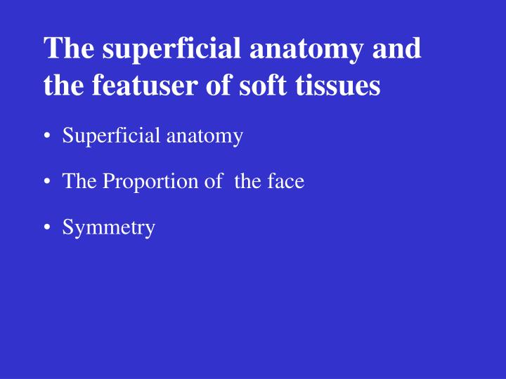 The superficial anatomy and the featuser of soft tissues
