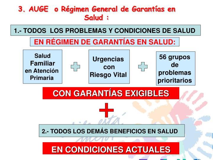3. AUGE  o Régimen General de Garantías en Salud :