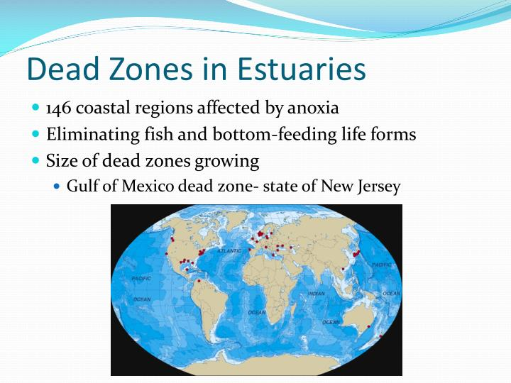 Dead Zones in Estuaries