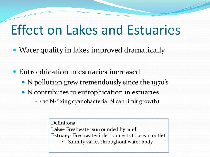 Effect on Lakes and Estuaries