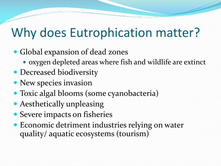 Why does Eutrophication matter?