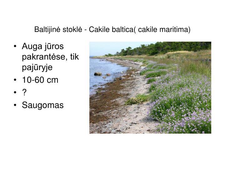 Baltijin