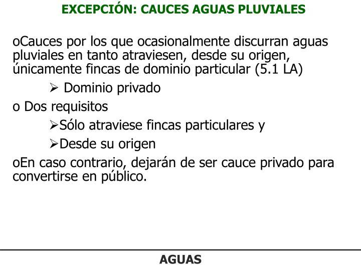 EXCEPCIÓN: CAUCES AGUAS PLUVIALES