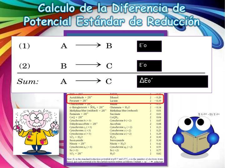 Calculo de la Diferencia de Potencial Estándar de Reducción
