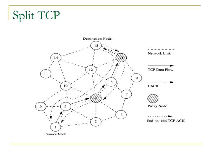 Split TCP