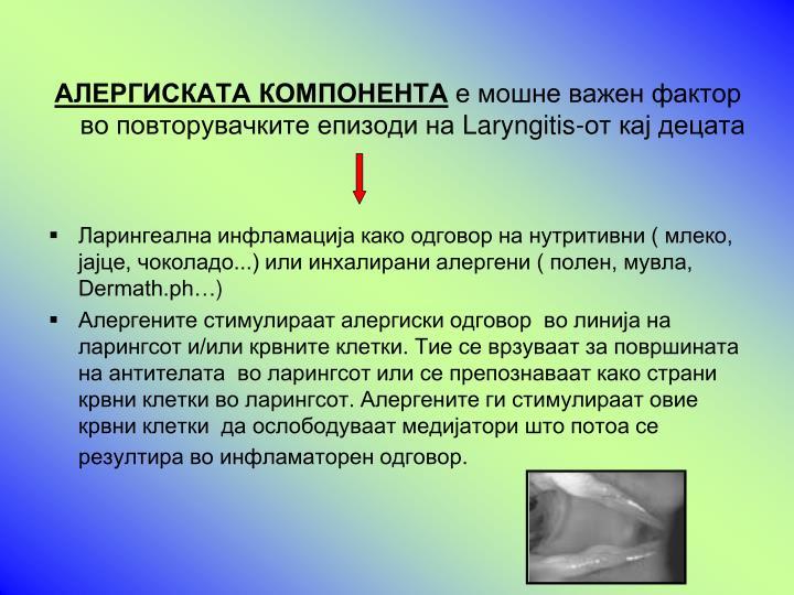 АЛЕРГИСКАТА КОМПОНЕНТА