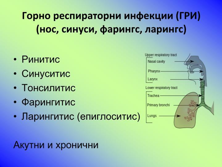 Горно респираторни инфекции (ГРИ)
