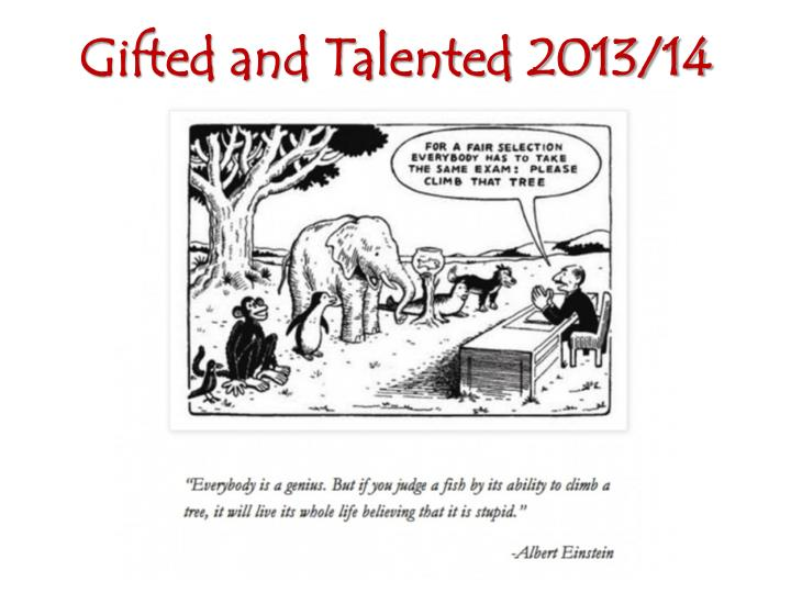 Gifted and talented 2013 14