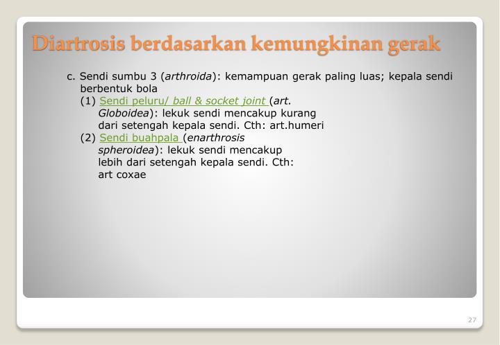 c. Sendi sumbu 3 (