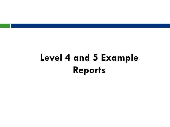 Level 4 and 5 Example Reports
