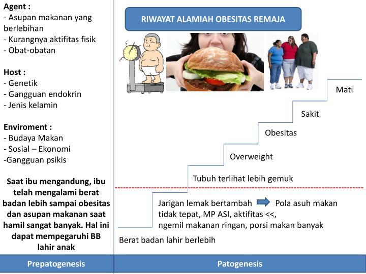 Gambaran Pengetahuan Remaja tentang Obesitas di SMP (kode058)
