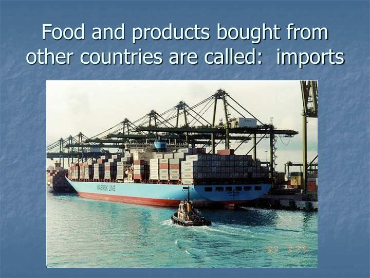 Food and products bought from other countries are called:  imports
