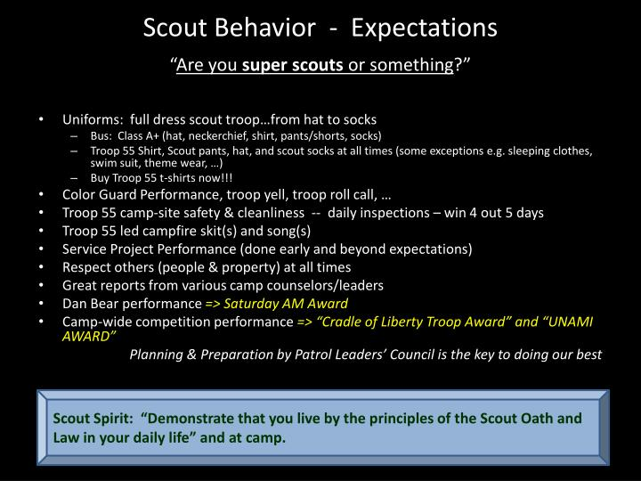 Scout behavior expectations