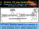 a struktur atp yang disederhanakan b penguraian atp menjadi adp pi energi fox bowers foss 1988 p 15