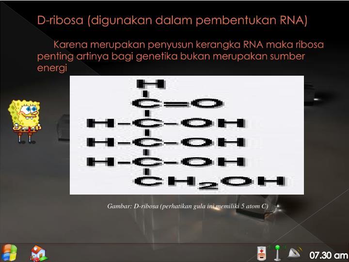 D-ribosa (digunakan dalam pembentukan RNA)