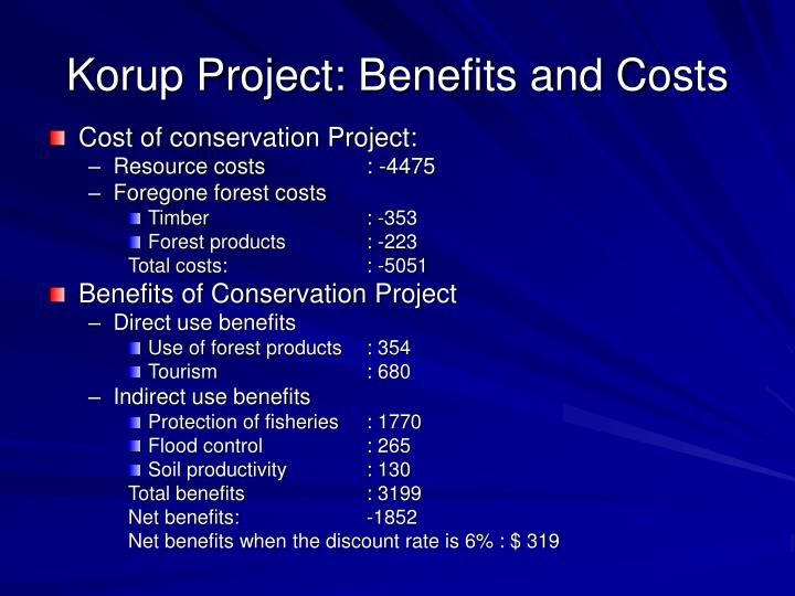 Korup Project: Benefits and Costs