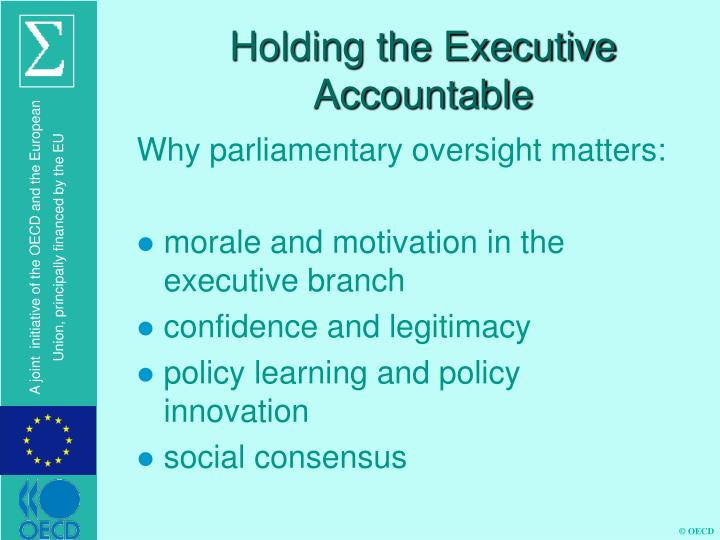 Holding the Executive Accountable