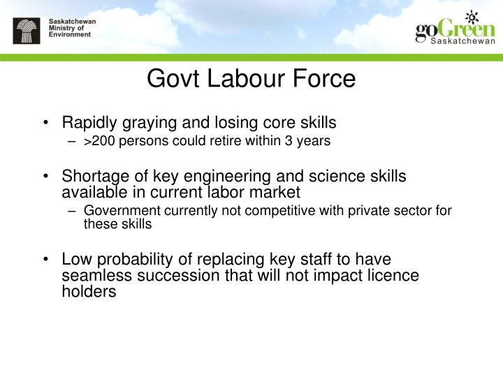 Govt Labour Force