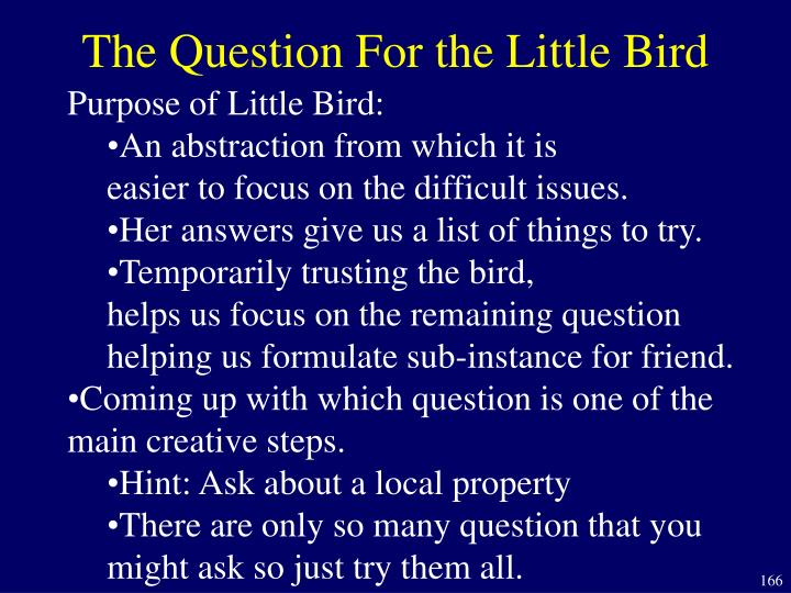 The Question For the Little Bird
