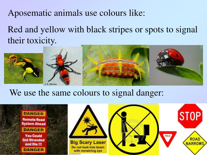 Aposematic animals use colours like: