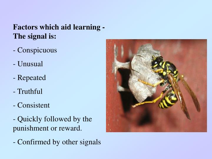 Factors which aid learning - The signal is: