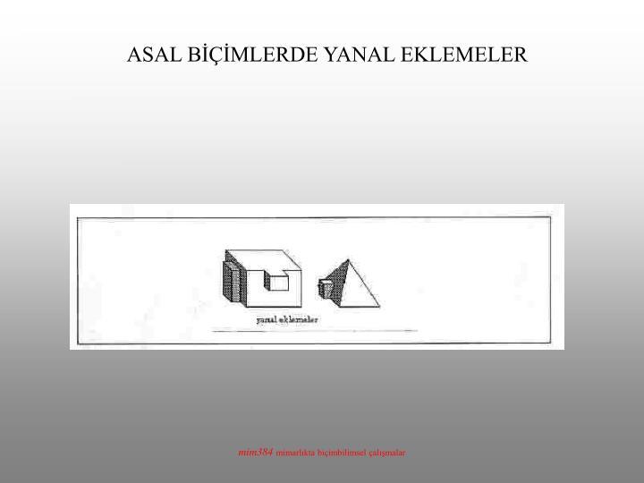 ASAL BİÇİMLERDE YANAL EKLEMELER