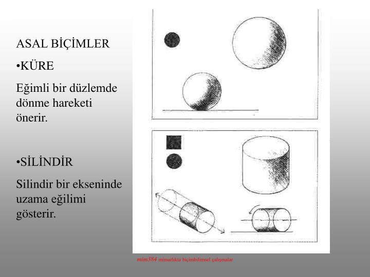 ASAL BİÇİMLER