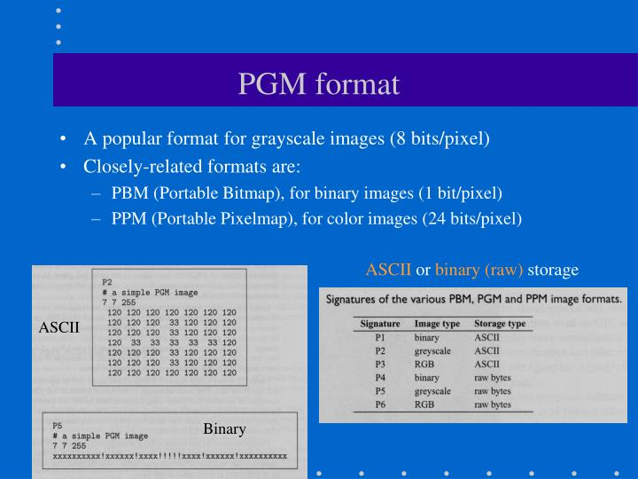 PGM format
