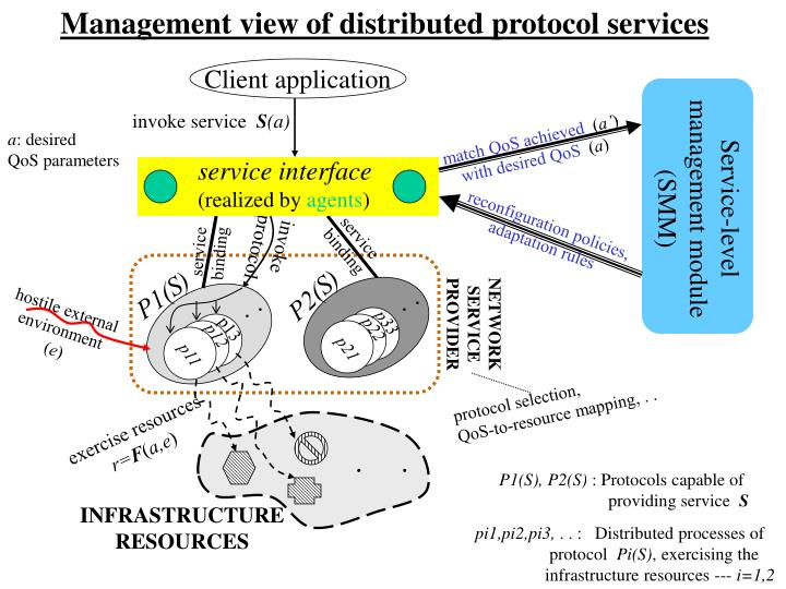 Management view of distributed protocol services