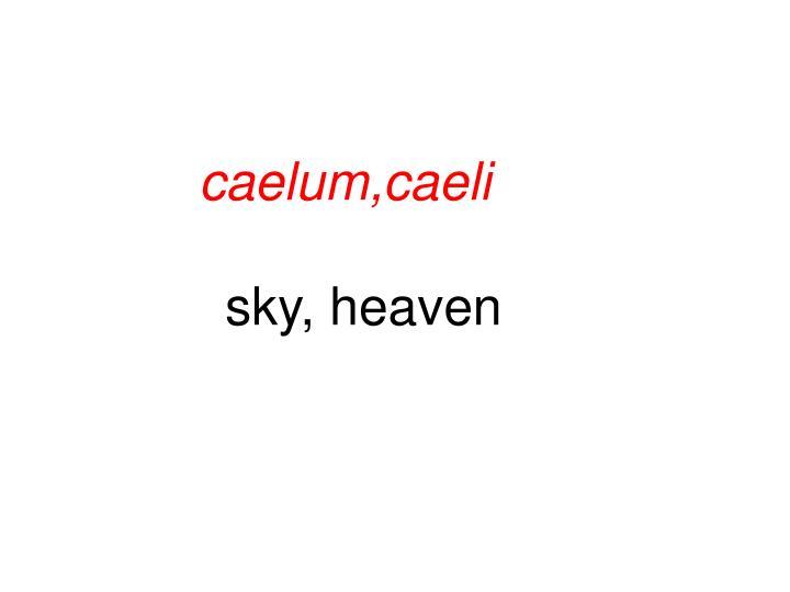 caelum,caeli