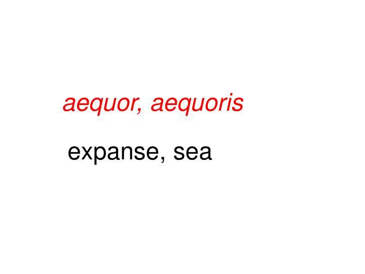 aequor, aequoris