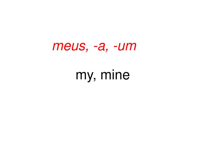 meus, -a, -um