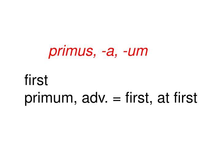 primus, -a, -um