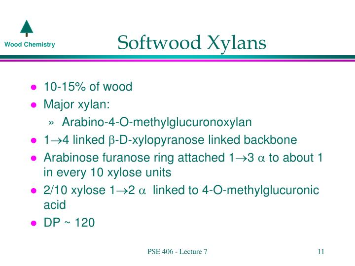 Softwood Xylans