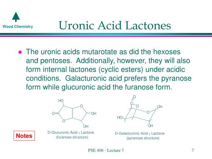 Uronic Acid Lactones