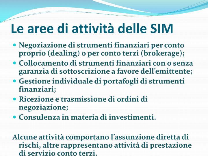 Le aree di attività delle SIM