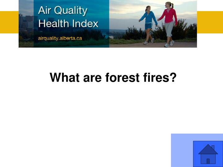 What are forest fires?