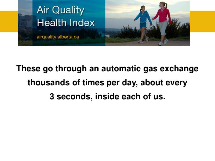 These go through an automatic gas exchange thousands of times per day, about every