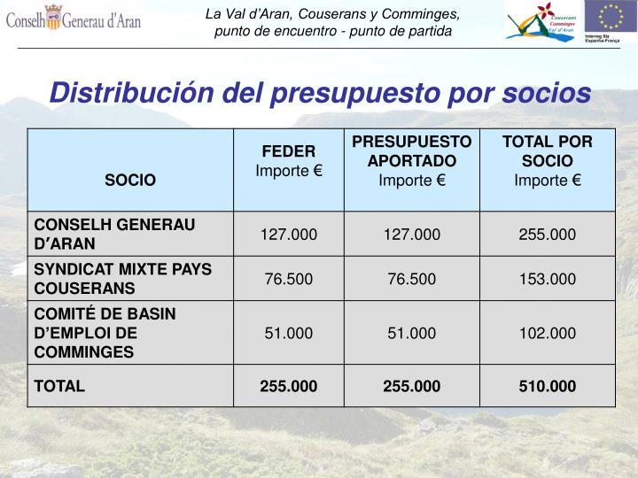 Distribución del presupuesto por socios