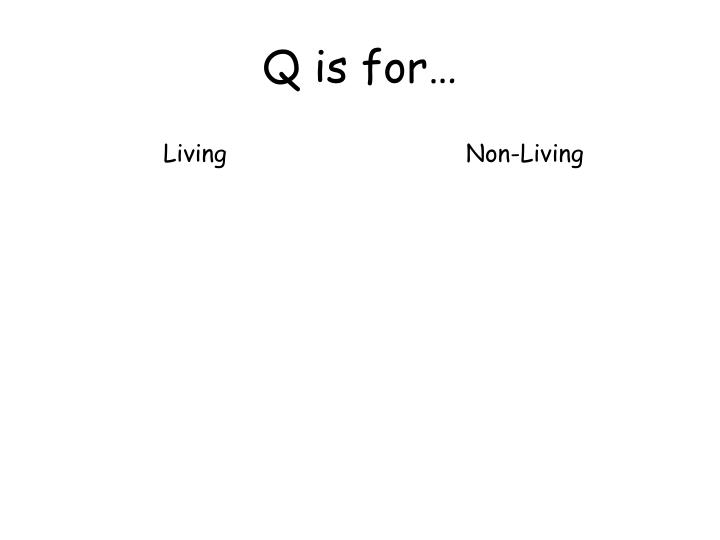 Q is for…