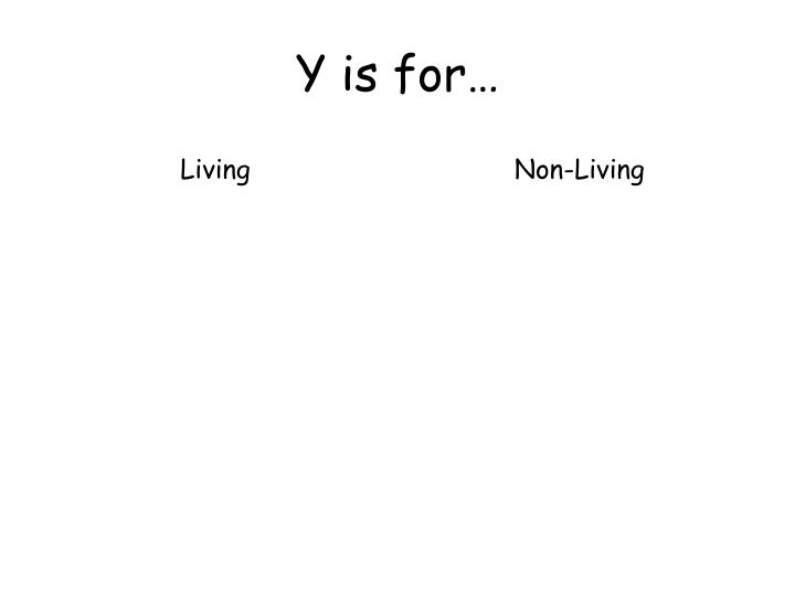 Y is for…