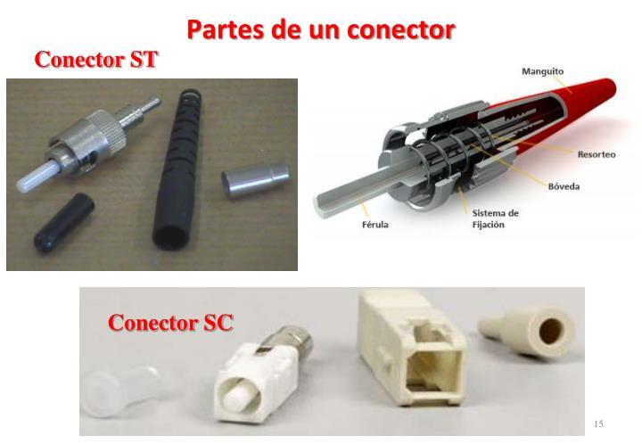 Partes de un conector