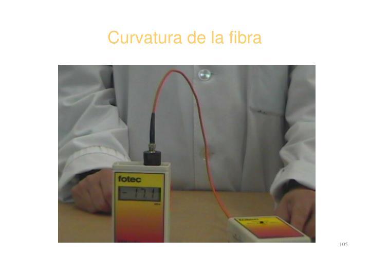 Curvatura de la fibra