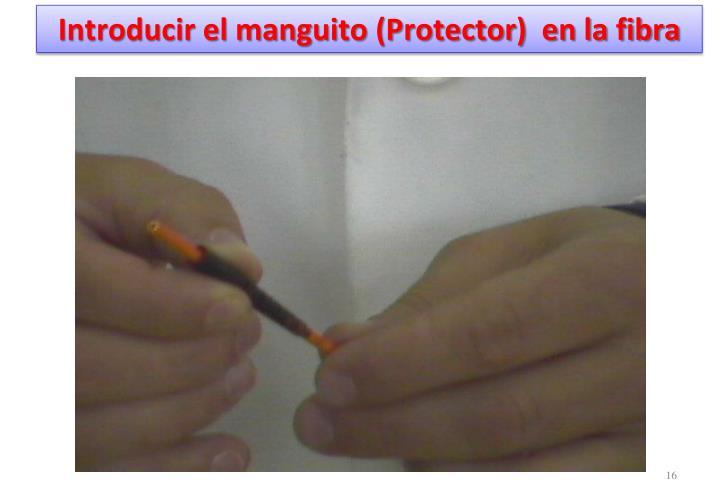 Introducir el manguito (Protector)  en la fibra