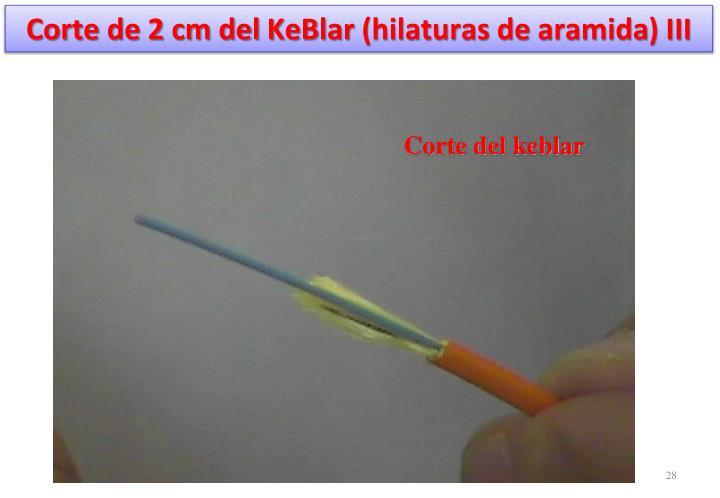Corte de 2 cm del