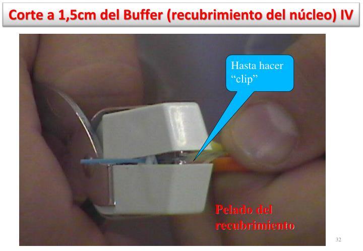 Corte a 1,5cm del Buffer (recubrimiento del núcleo) IV